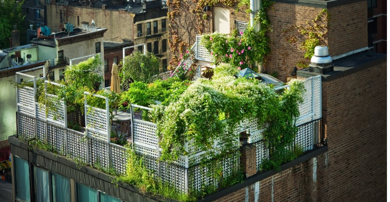 Can A Green Roof Be Installed Anywhere Blogue 201 Nergir